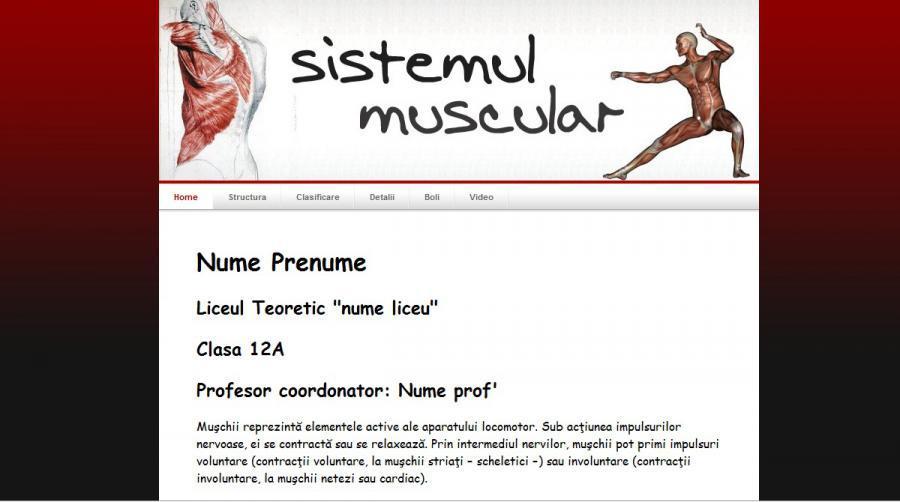 Atestat informatica Sistemul muscular