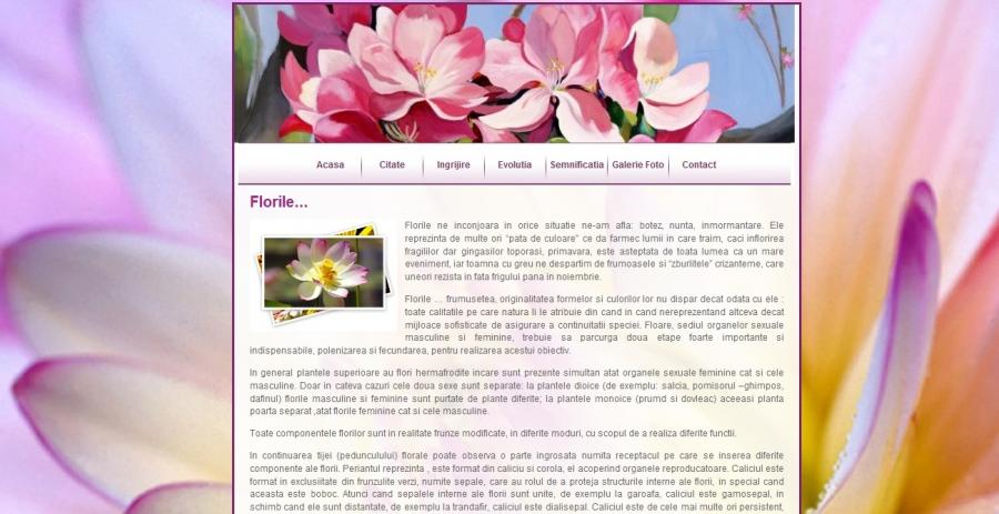 Atestat informatica Flori
