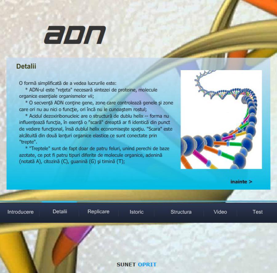 Atestat informatica ADN