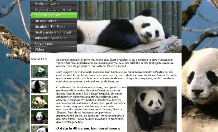 Atestat informatica Ursii Panda