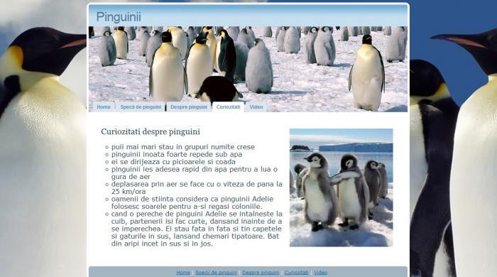 Atestat informatica Pinguinii