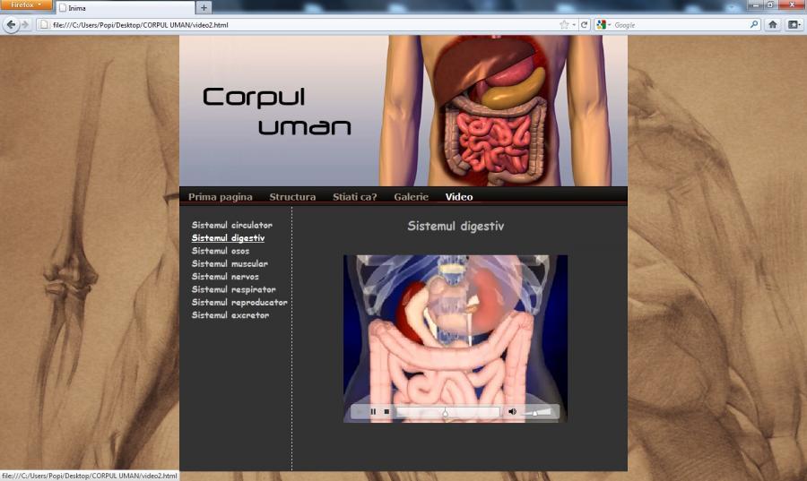 Atestat informatica Corpul uman