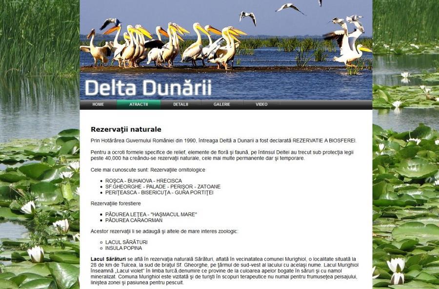 atestat informatica deltat dunarii