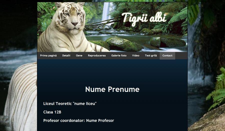 Atestat informatica Tigrii albi