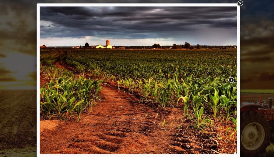 Atestat informatica Agricultura