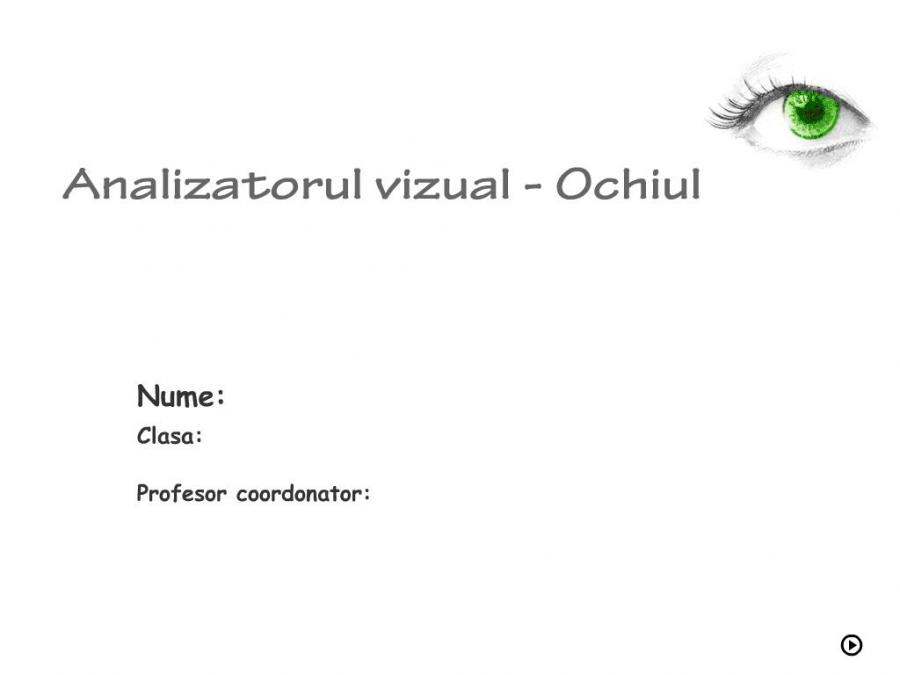 Atestat informatica Analizatorul vizual - Ochiul