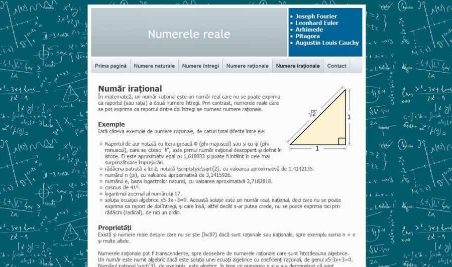 Atestat informatica Numere Reale