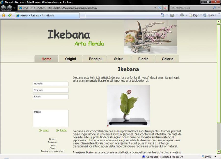 Atestat informatica Ikebana - arta florala