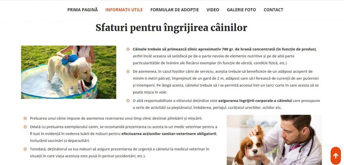 Atestat informatica Adoptia animalelor