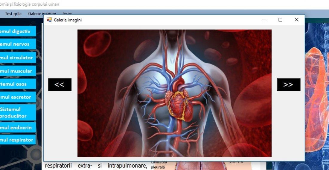 Atestat informatica Anatomia si fiziologia corpului uman