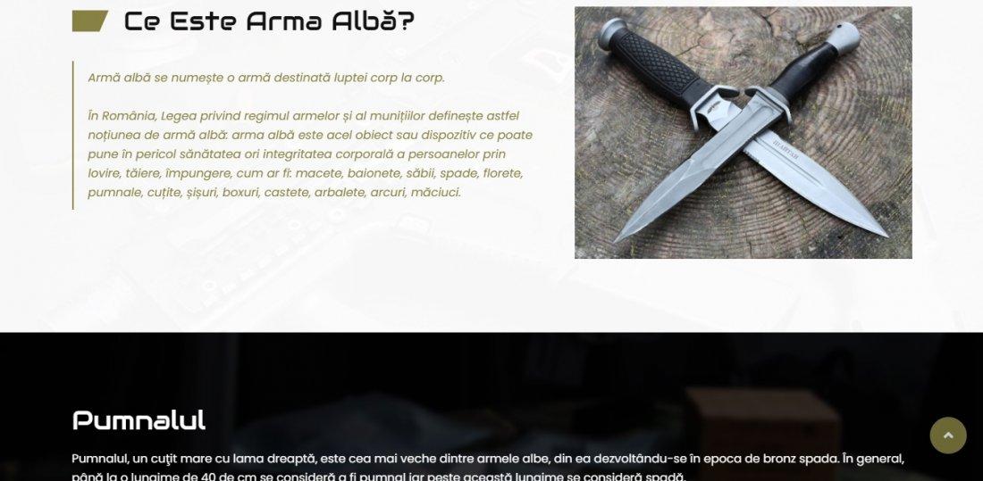 Atestat informatica Armament si baze militare