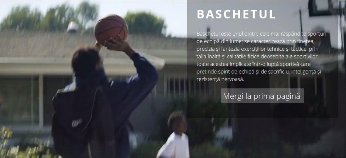 Atestat informatica Baschet