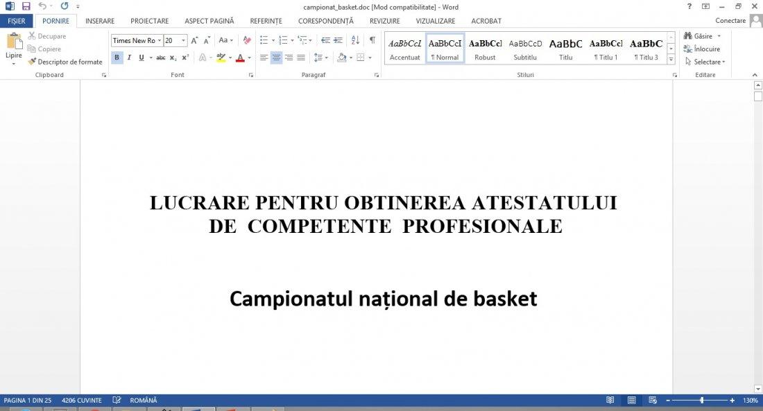 Atestat informatica Campionat baschet