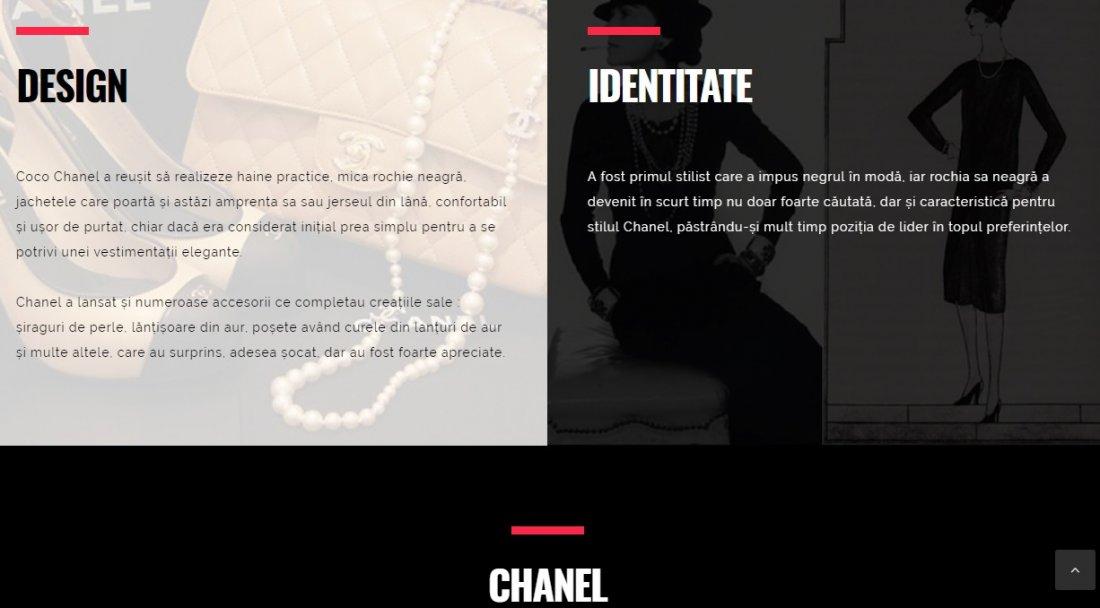 Atestat informatica Chanel