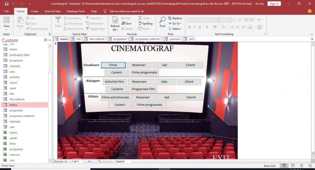 Atestat informatica Cinematograf