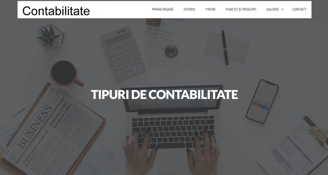 Atestat informatica Contabilitate