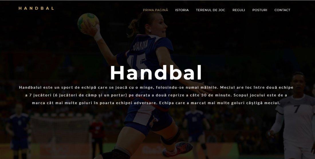 Atestat informatica Handbal