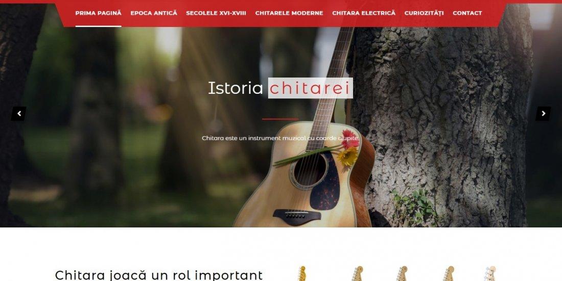 Atestat informatica Istoria chitarei