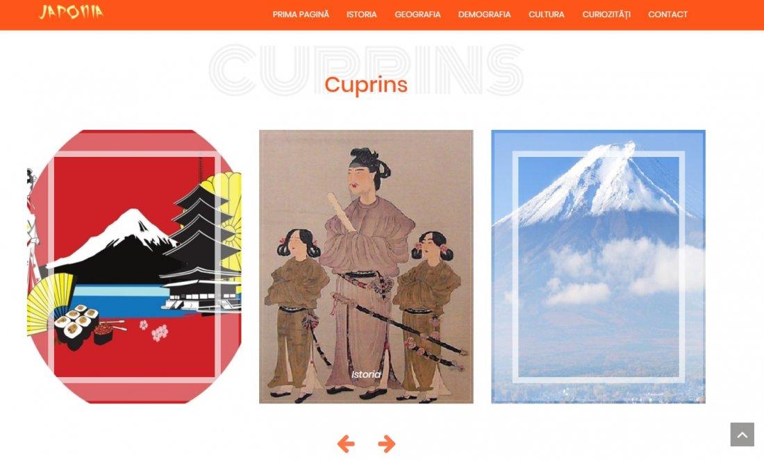 Atestat informatica Japonia