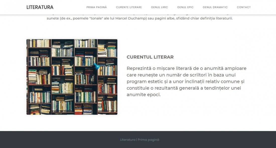 Atestat informatica Literatura