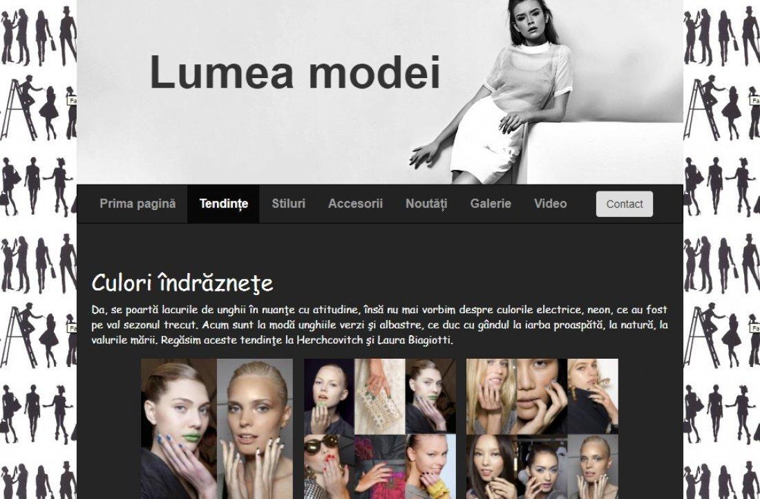 Atestat informatica Lumea modei