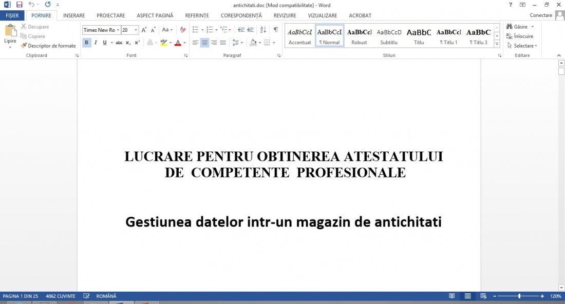 Atestat informatica Magazin antichitati