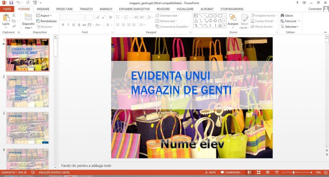 Atestat informatica Magazin de genti