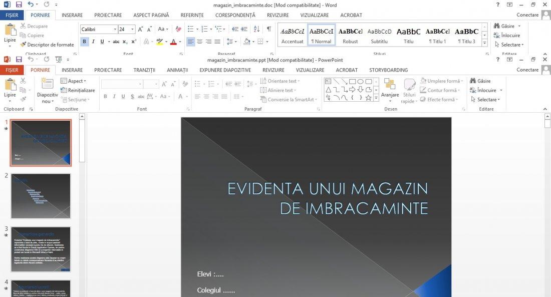 Atestat informatica Magazin de haine