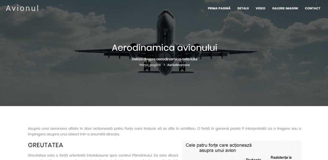 Atestat informatica Mecanica si dinamica zborului avionului