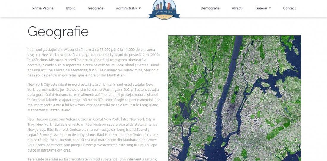 Atestat informatica New York