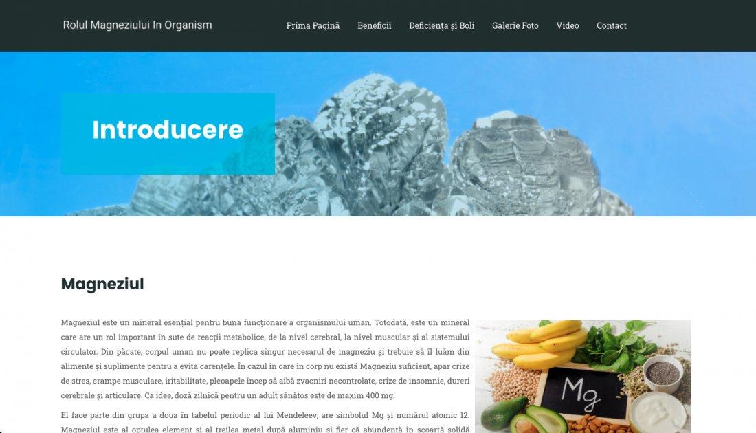 Atestat informatica Rolul Magneziului in organism