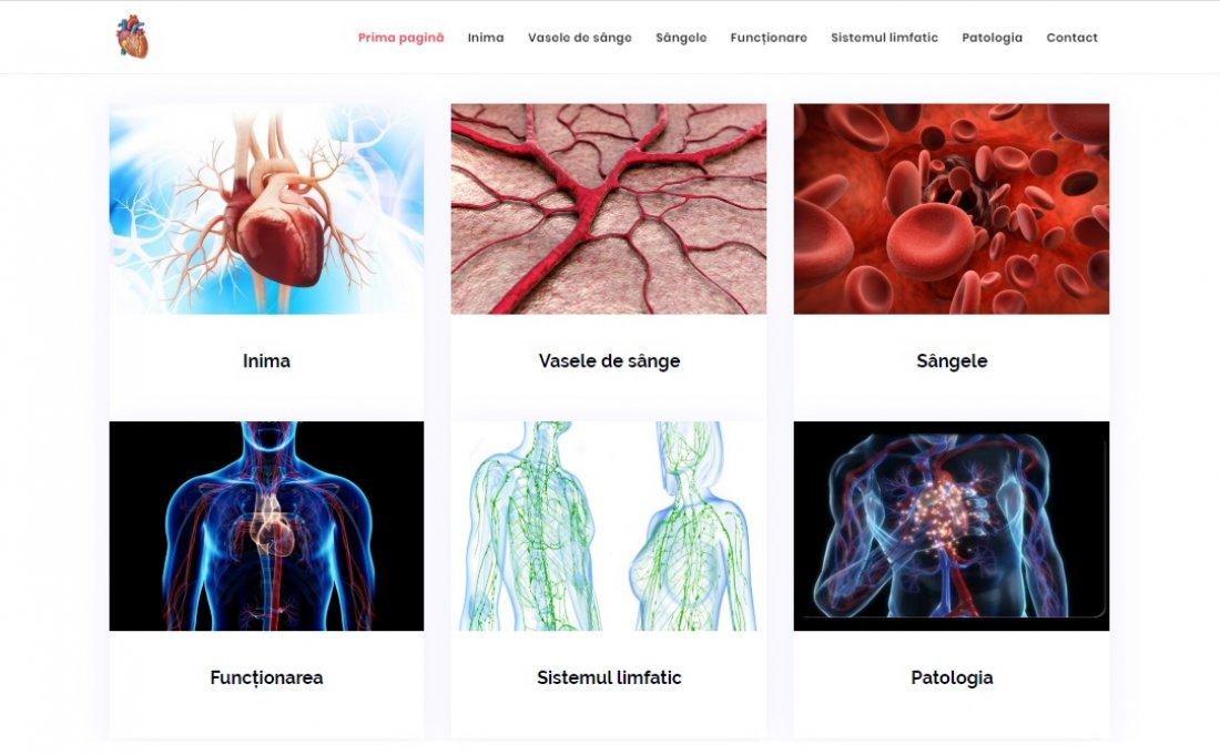 Atestat informatica Sistemul circulator v2