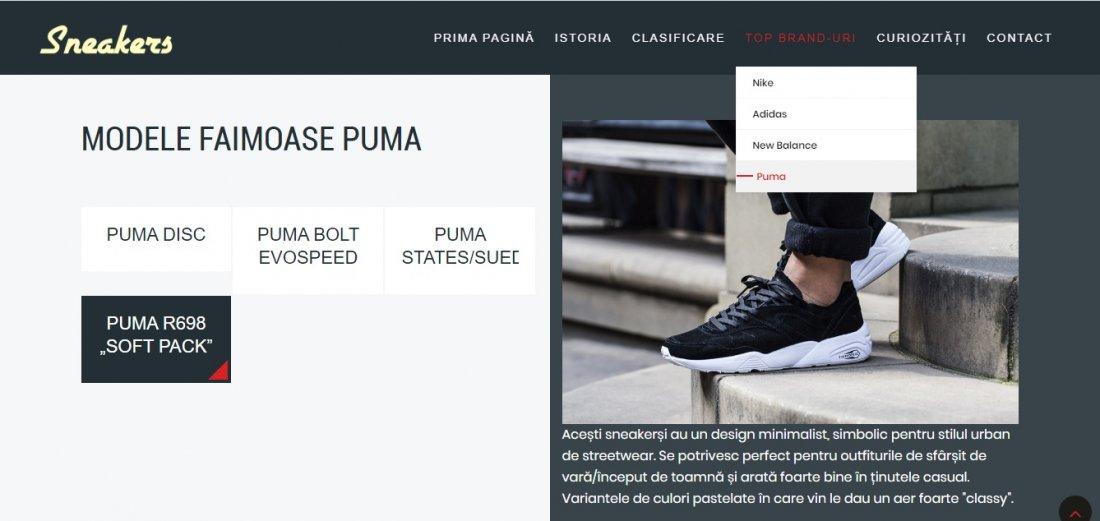Atestat informatica Sneakers