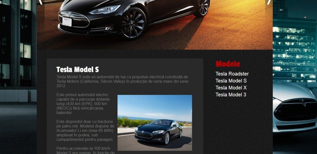 Atestat informatica Tesla Motors