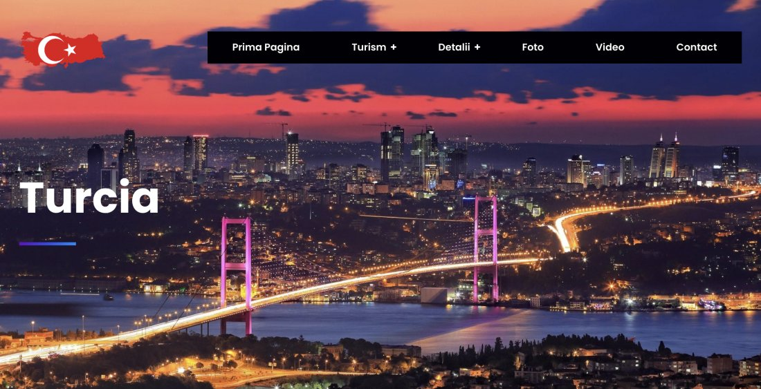 Atestat informatica Turcia