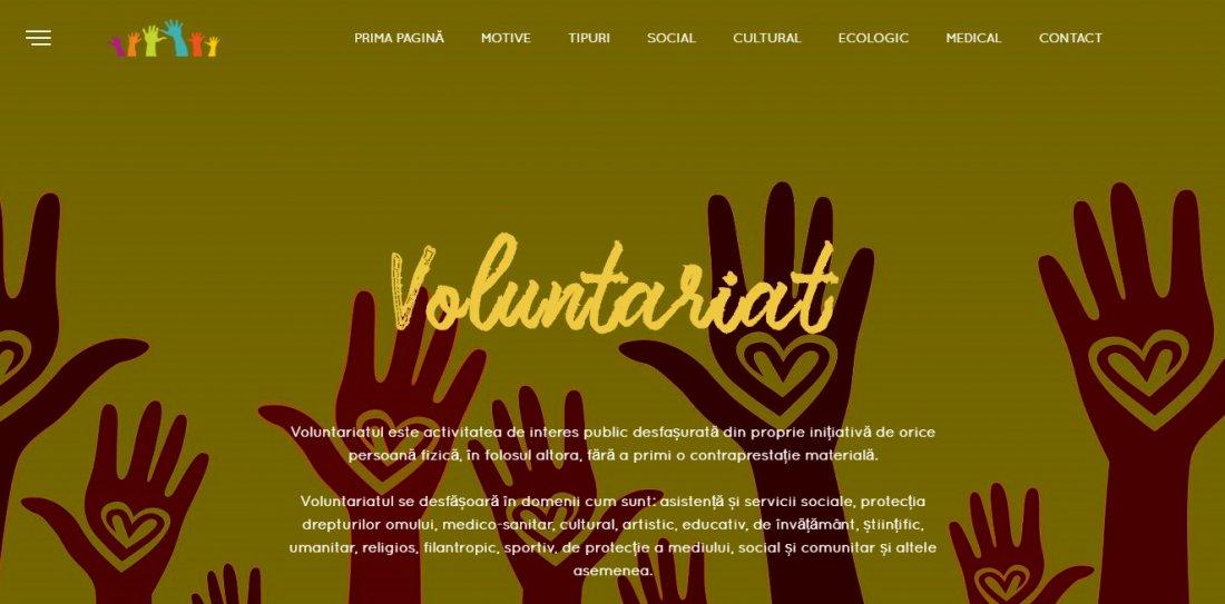 Atestat informatica Voluntariat