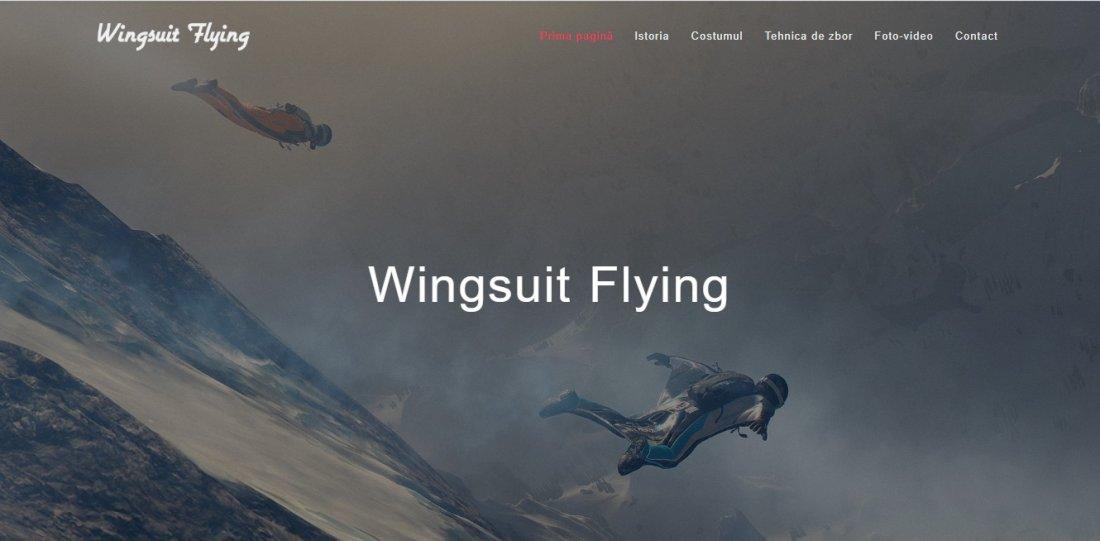 Atestat informatica Wingsuit Flying