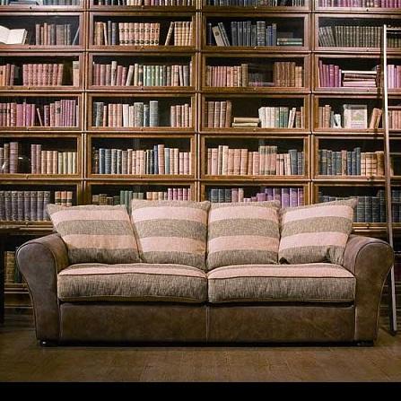 Atestat informatica Biblioteca virtuala