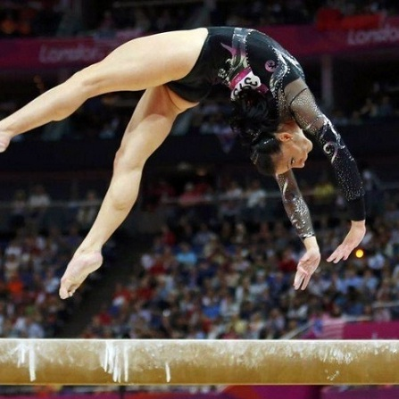 Atestat informatica Campionatul mondial de gimnastica