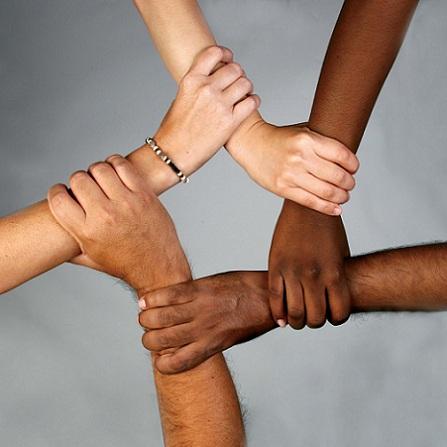 Atestat informatica Combaterea rasismului