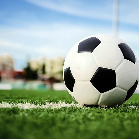 Atestat informatica Gestiunea unei echipe de fotbal