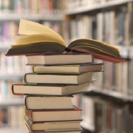 Atestat informatica Librarie online