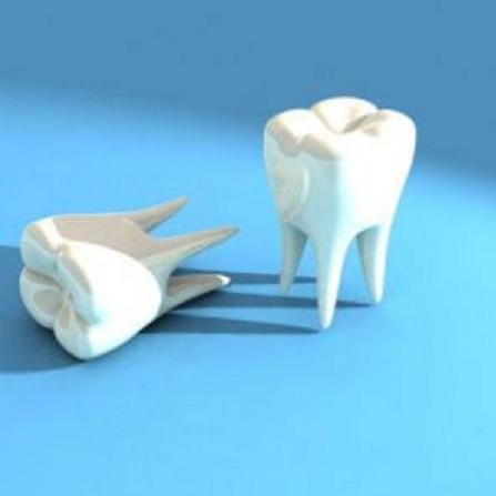 Atestat informatica Tehnica dentara