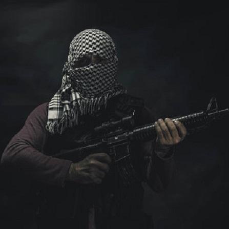 Atestat informatica Terorismul