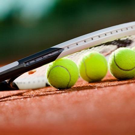 Atestat informatica Turneu de tenis